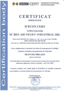 thumbnail of ISO 9001